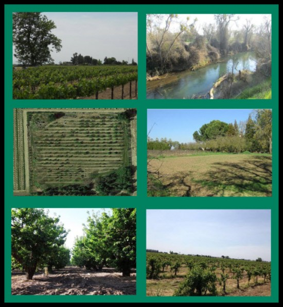 Lots and Land for Sale Lodi - Acampo CA